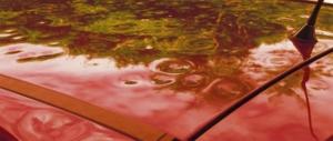 Ripristino auto grandinate - Carrozzeria Crippa